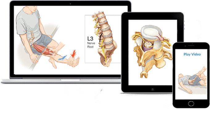 Chiropractic Online CE Courses (Continuing Education)